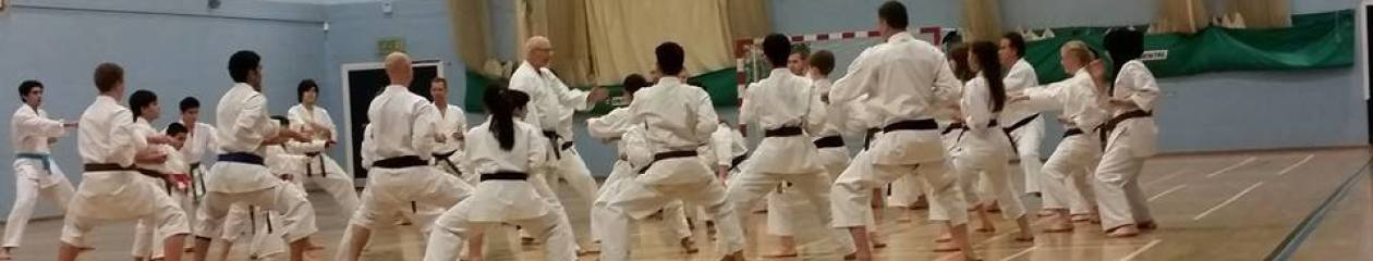 Hoshindo Karate Manchester